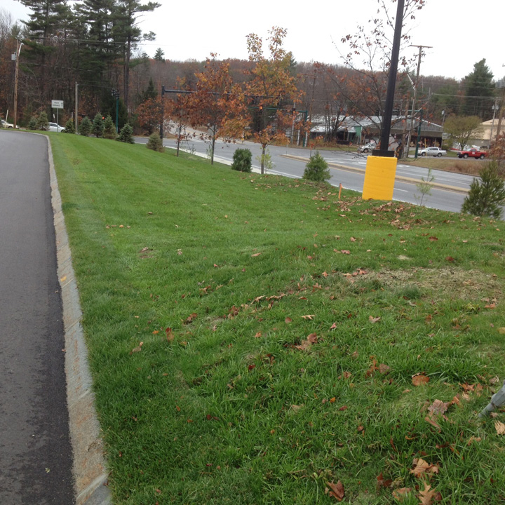A berm area separates the Grasspave2 parking area from other landscaping.