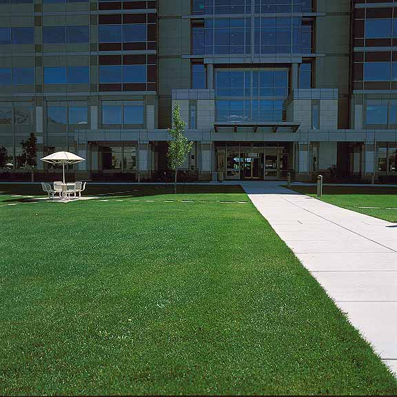 Porous Pavers were installed in the fire lane access areas using Grasspave2.