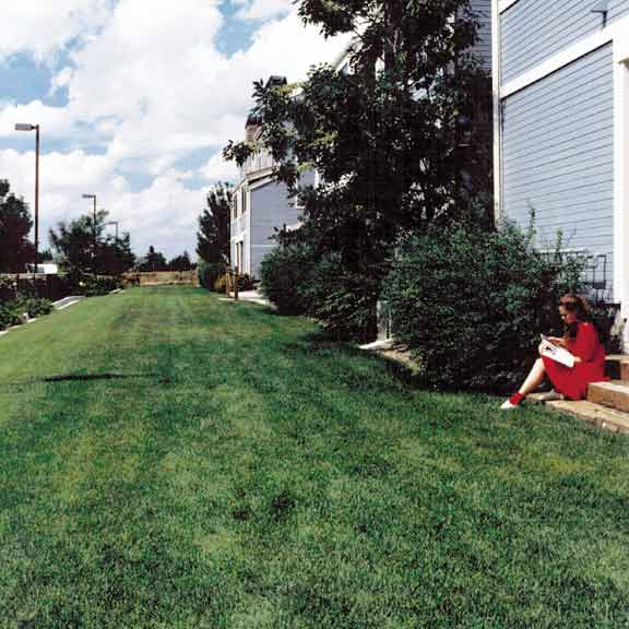 Grass Pavers were installed in the fire lane access areas using Grasspave2.