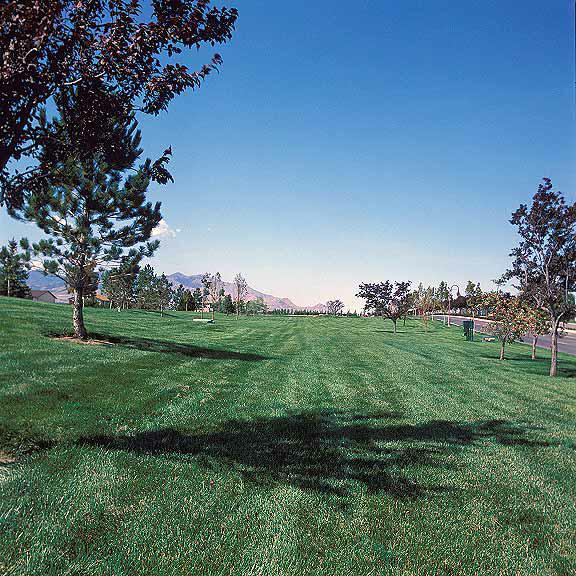Pervious Grass was installed in the utility-access areas using Grasspave2.
