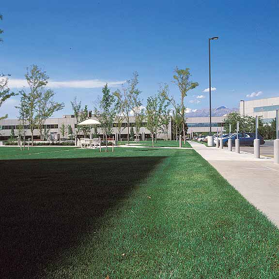 Pervious Pavers were installed in the fire lane access areas using Grasspave2.