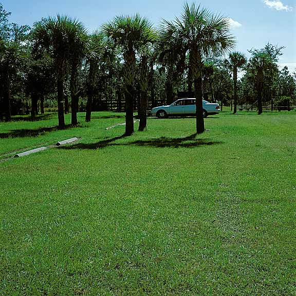 Grass Paver was used on the parking lot at Crew Marsh Trail using Grasspave2.