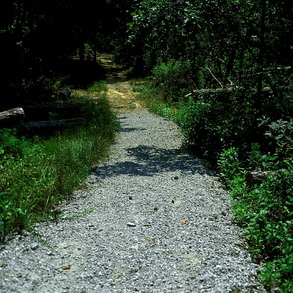 Porous Paving was installed on paths to prevent erosion at the Daniel Boone National Forest, Whitley City, Kentucky, using Gravelpave2.