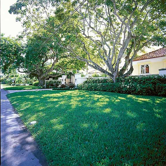 Porous Pavers were installed for guest parking on Key Biscayne Island, Florida, using Grasspave2.