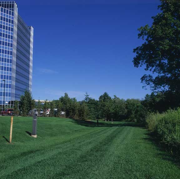Pervious Pavers were installed in the fire lane access areas at Blue Cross - Blue Shield of Michigan, Southfield, Michigan, using Grasspave2.