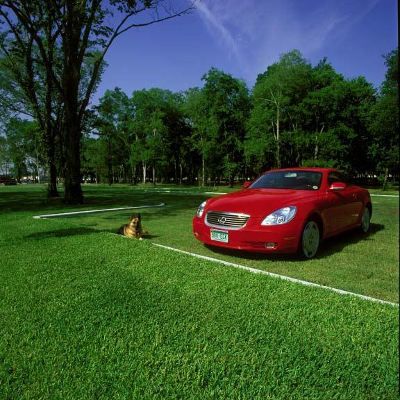 Grass porous pavers were installed in the parking lot at the Jersey Baptist Church in Houston, Texas, using Grasspave2.