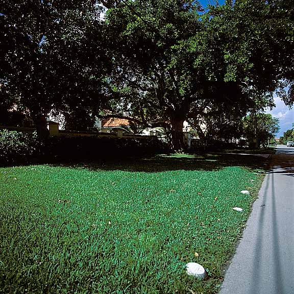 Permeable Pavers were installed in the parking areas using Grasspave2.