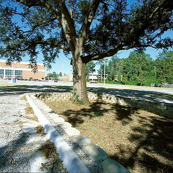 Grass Paving and Aggregate Paving were used in the parking lot using Grasspave2 and Gravelpave2.