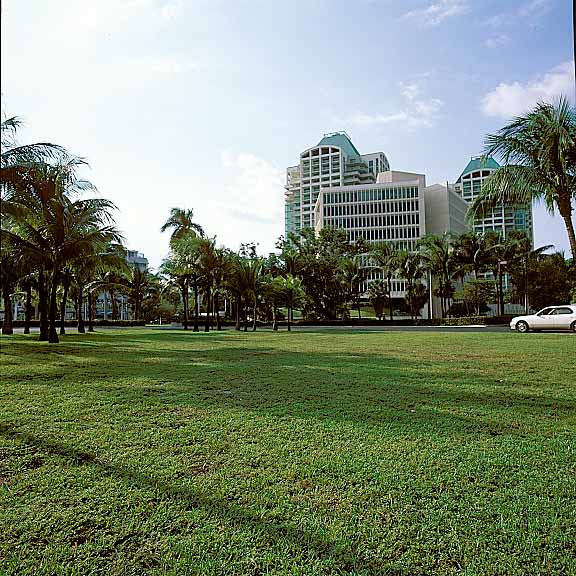 Turf Pavers were installed on the grounds at Coconut Grove Convention Center in Miami, Florida, using Grasspave2.