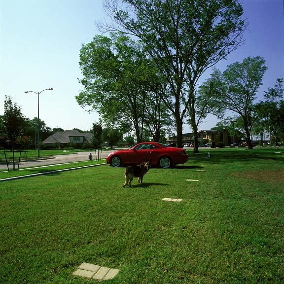 Grid paver was installed in the parking lot at the Jersey Baptist Church in Houston, Texas, using Grasspave2.