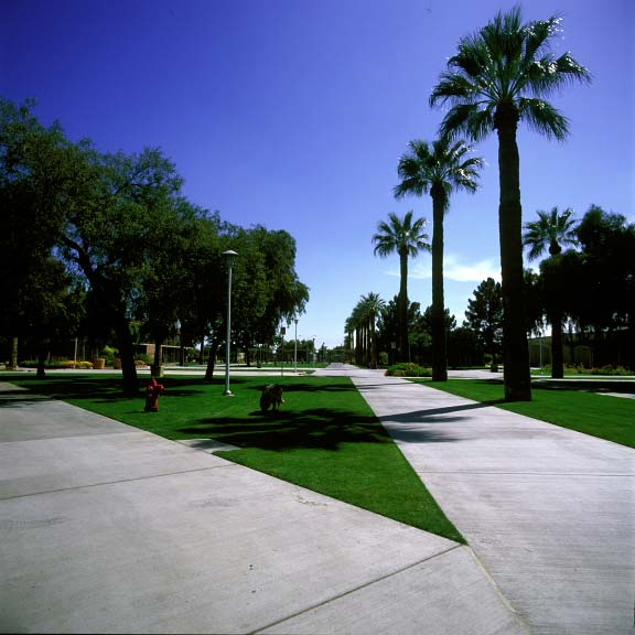 Permeable pavers were installed in fire-lane access areas at Glendale Community College using Grasspave2.