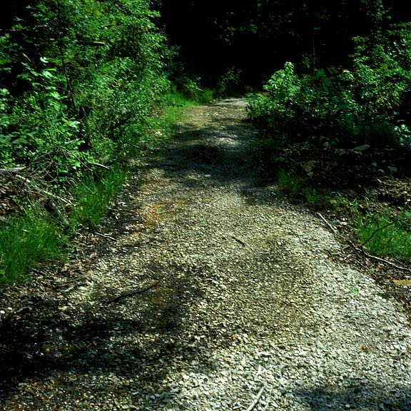 Porous Pavement was installed to prevent erosion caused by flooding in the paths at the Daniel Boone National Forest, Whitley City, Kentucky, using Gravelpave2.