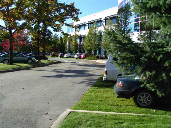 Porous parking was installed in parking areas at the Crestwood Corporation in Richmond, British Columbia, using Grasspave2.