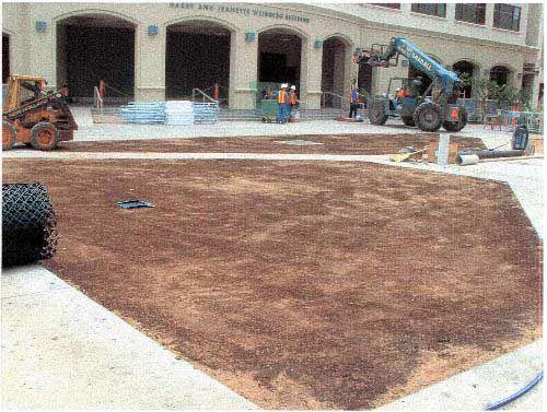 Grass fire lane was installed at the Iolani School, Honolulu, Hawaii, using Grasspave2.