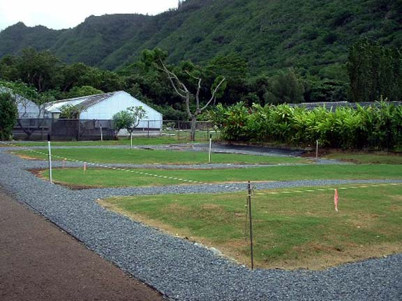 Gravel reinforcement mats were installed at Magoon Turf Demonstration & Research facilities in Honolulu, Hawaii, using Gravelpave2.