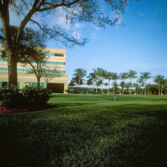 Permeable grass pavement was installed in the fire-lane access areas at Siemens Corporate Headquarters in Boca Raton, Florida, using Grasspave2.