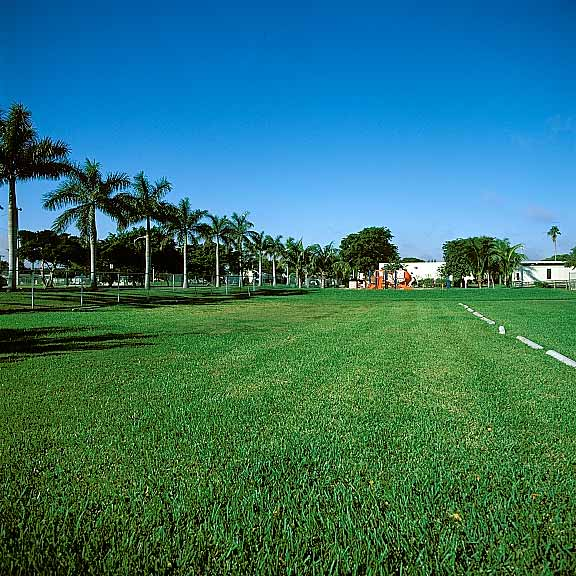 Grass Paving was installed in the parking lot of the Collins Elementary School, Dania, Florida, using Grasspave2.