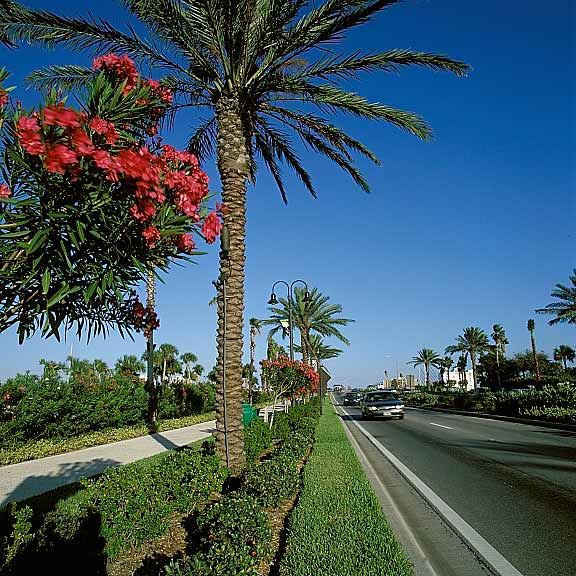 Grass Reinforcement Mat was used in the walkways at the entryway to Clearwater Beach, Clearwater, Florida, using Grasspave2.