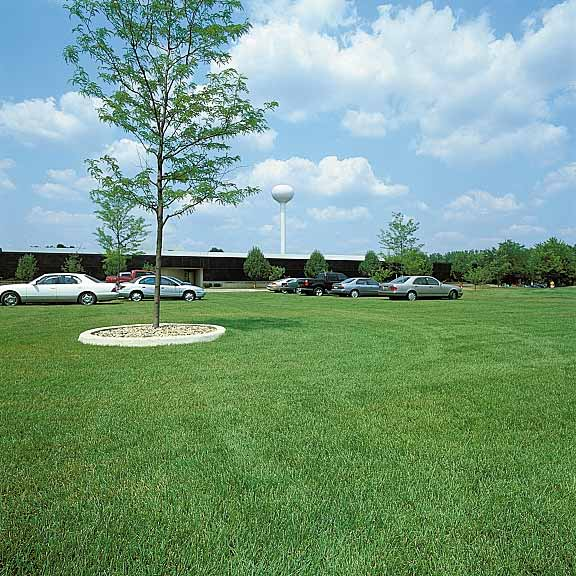 Grass Pavers were installed in the parking areas at Blue Cross Blue Shield in Wixom, Michigan, using Grasspave2.