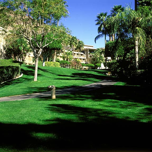 Pervious Pavers were installed in the fire lane access areas at The Phoenician Canyon Suites in Scottsdale, Arizona, using Grasspave2.