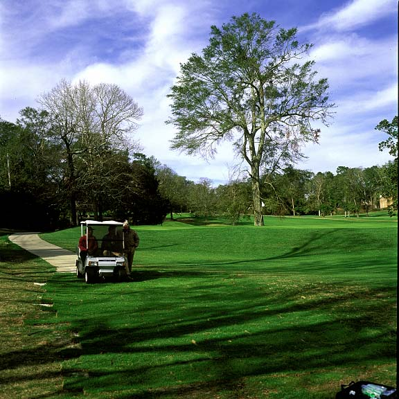 A Turf-Reinforcement System and Drainage Layer were installed at Springhill College Golf Course in Mobile, Alabama, using Grasspave2 and Draincore2.