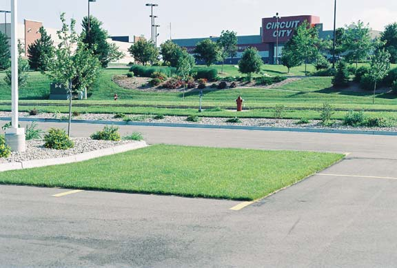 Permeable Pavers were installed in the parking bays at The Sports Authority, Madison, Wisconsin, using Grasspave2.