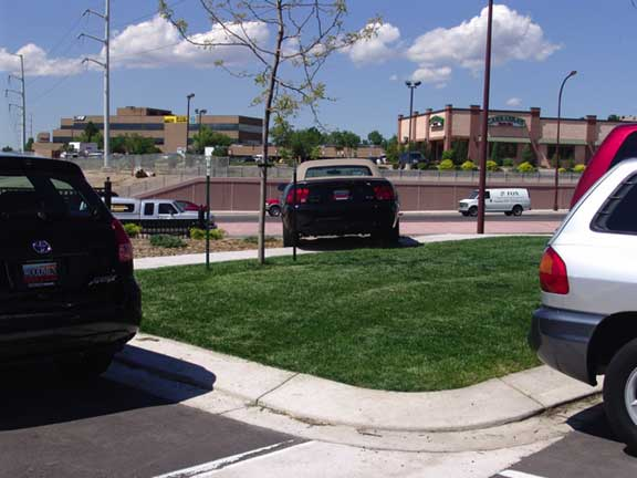 Grass Paving was installed in the car display areas at Woodmen Nissan Pre-Owned Vehicles, Colorado Springs, Colorado, using Grasspave2.