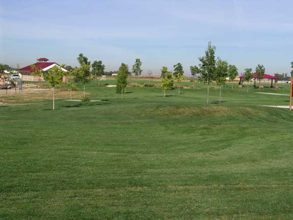 A Stormwater-Retention System was installed at Settlers Park in Meridian, Idaho, using Grasspave2.