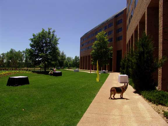Pervious Paving was installed in the fire lane access areas at Inverness Hotel and Conference Center, Englewood, Colorado, using Grasspave2.