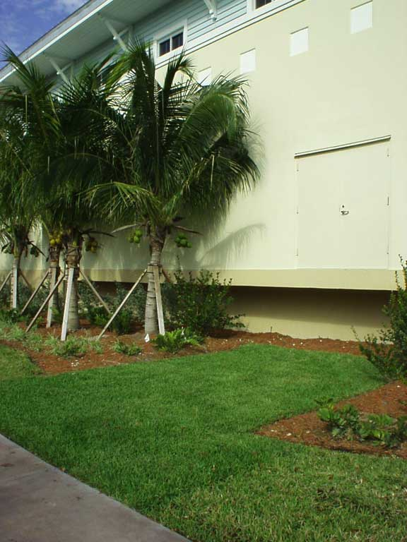 A Grass-Reinforced-Utility Lane was installed at the Civic Youth Center, City of Key Biscayne, Key Biscayne, Florida, using Grasspave2.