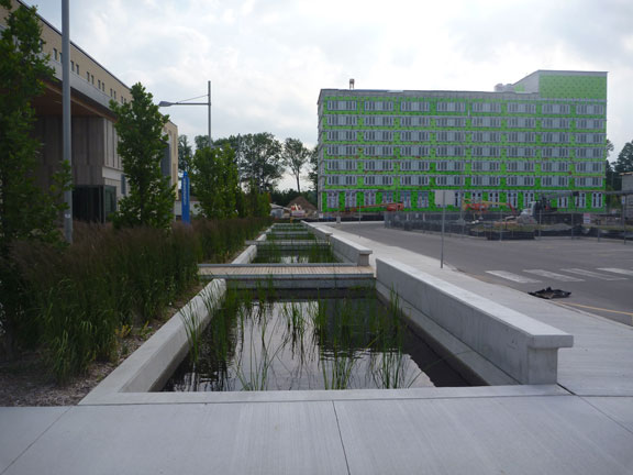 Bridges allow students to cross the pond (over Rainstore3) to get to the building.