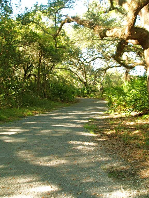 A Permeable Erosion System was installed on the Jekyll Island Trail, Jekyll Island, Georgia, using Gravelpave2.