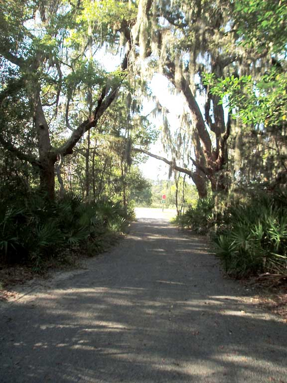 A Trail Erosion Prevention System was installed on the Jekyll Island Trail, Jekyll Island, Georgia, using Gravelpave2.