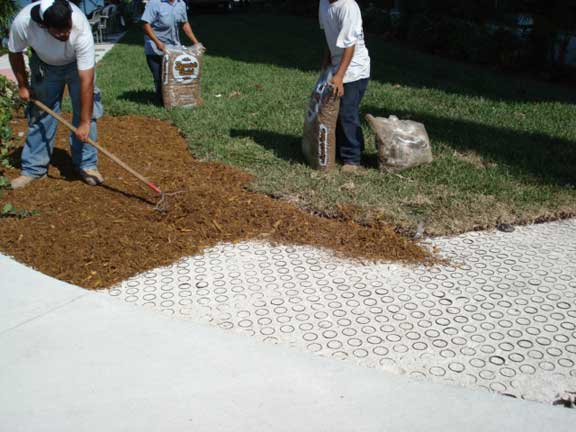 A Turf Reinforced System was installed in the fire lane and utility access areas at Mount Sinai Hospital, Miami Beach, Florida, using Grasspave2.
