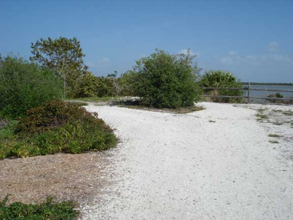 Erosion Control Mats were installed to prevent erosion of trails at Bowditch Point, Ft. Myers Beach, Florida, using Slopetame2.