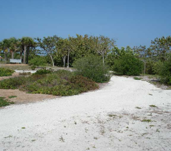 A Trail Reinforcement System was installed at Bowditch Point, Ft. Myers Beach, Florida, using Slopetame2.