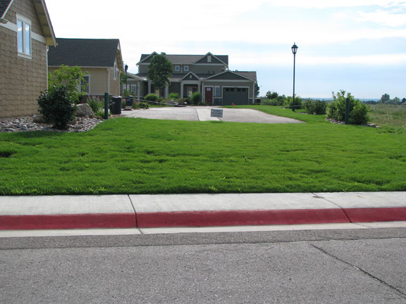 A gently sloping curb allows access from the street to the Grasspave2 grass fire lane.