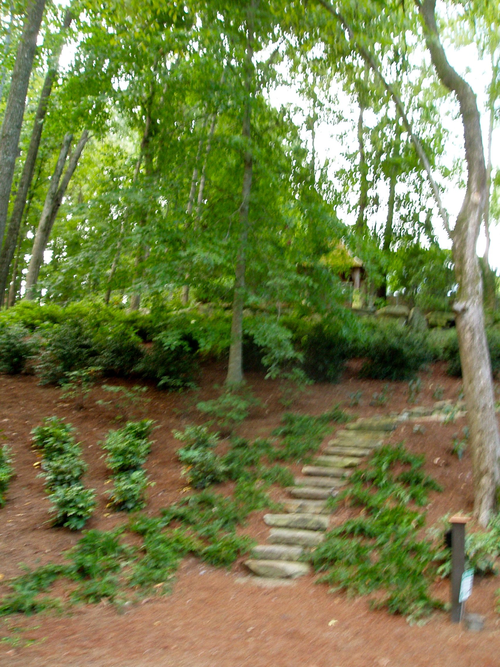 Additional landscaping at the site.
