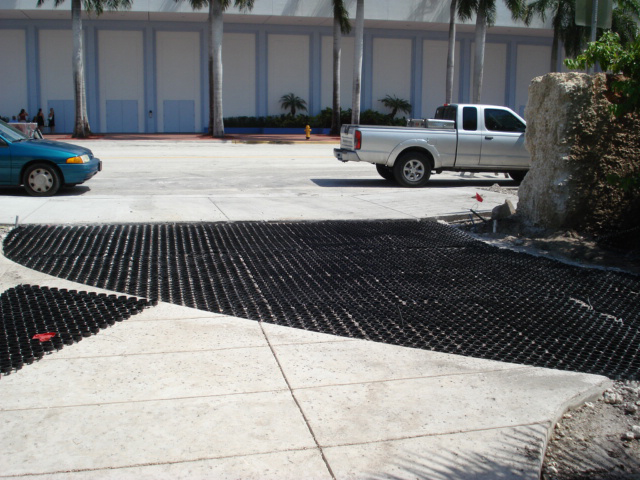 Grass paver level with the concrete