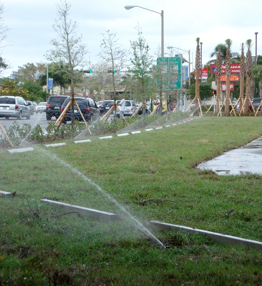Miami Marlins Baseball Parking on Grass