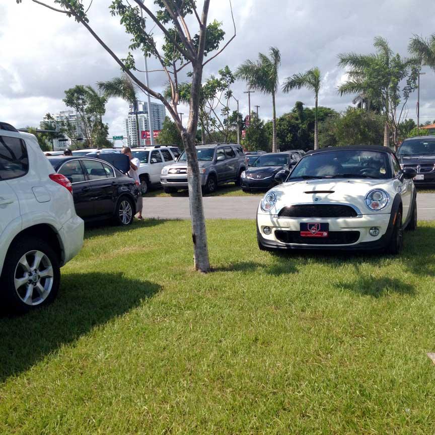 Car parked on Grasspave2