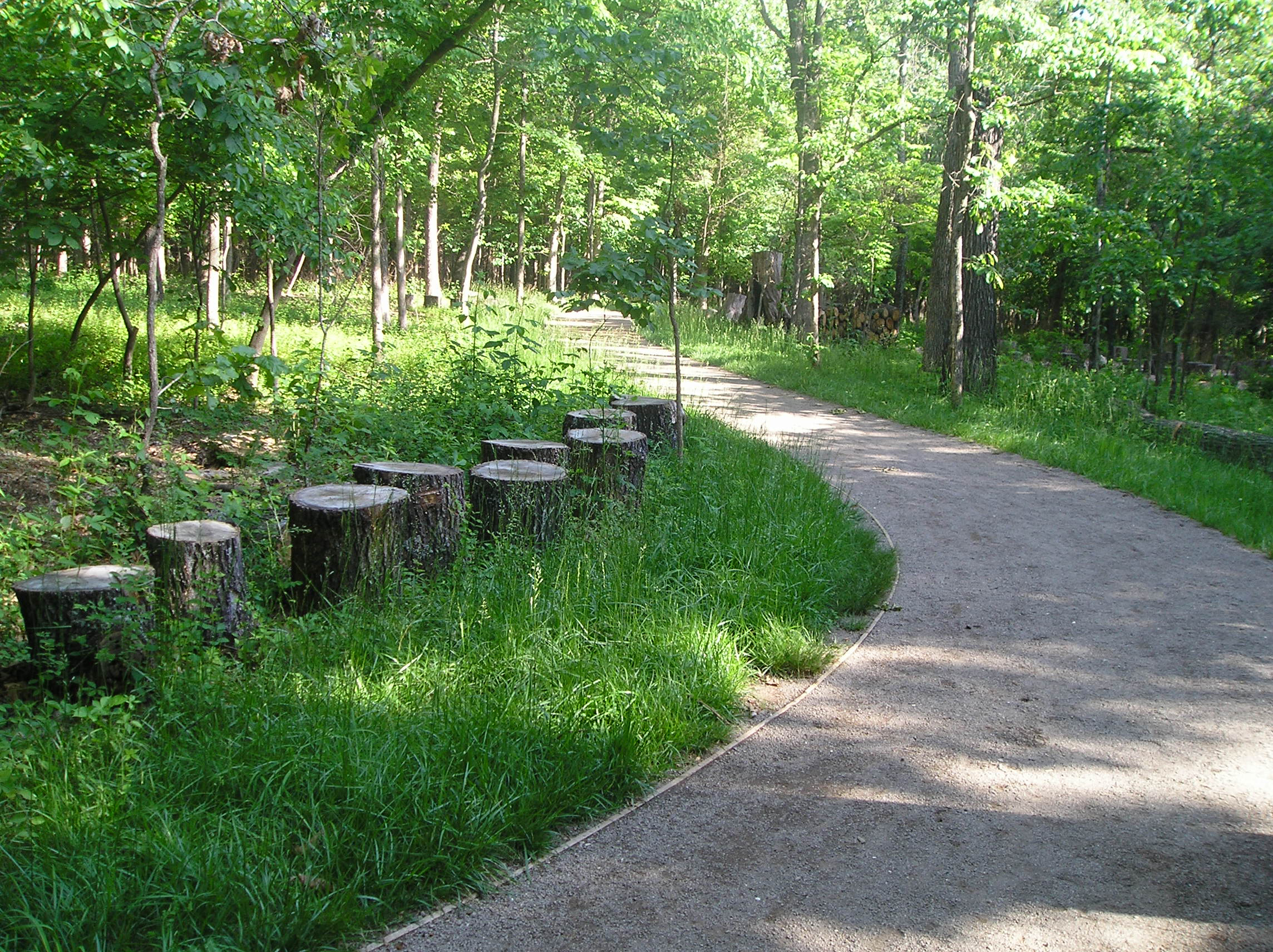 Dogwood Trail reinforced with Gravelpave2 pervious pavers