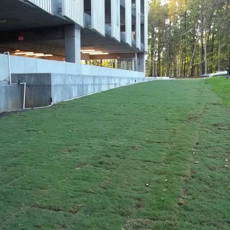 The completed fire lane with Grassapve2.