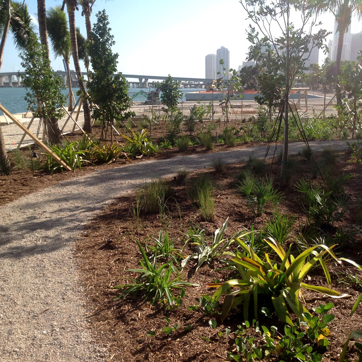 Sculpture garden trail at the Miami Museum of Art