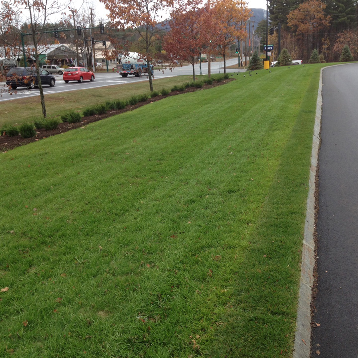 A concrete lip makes the transition from the asphalt to the Grasspave2 area, smoother.