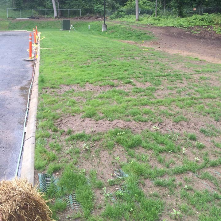 Grass seed was planted in the top soil-filled Terratame2.