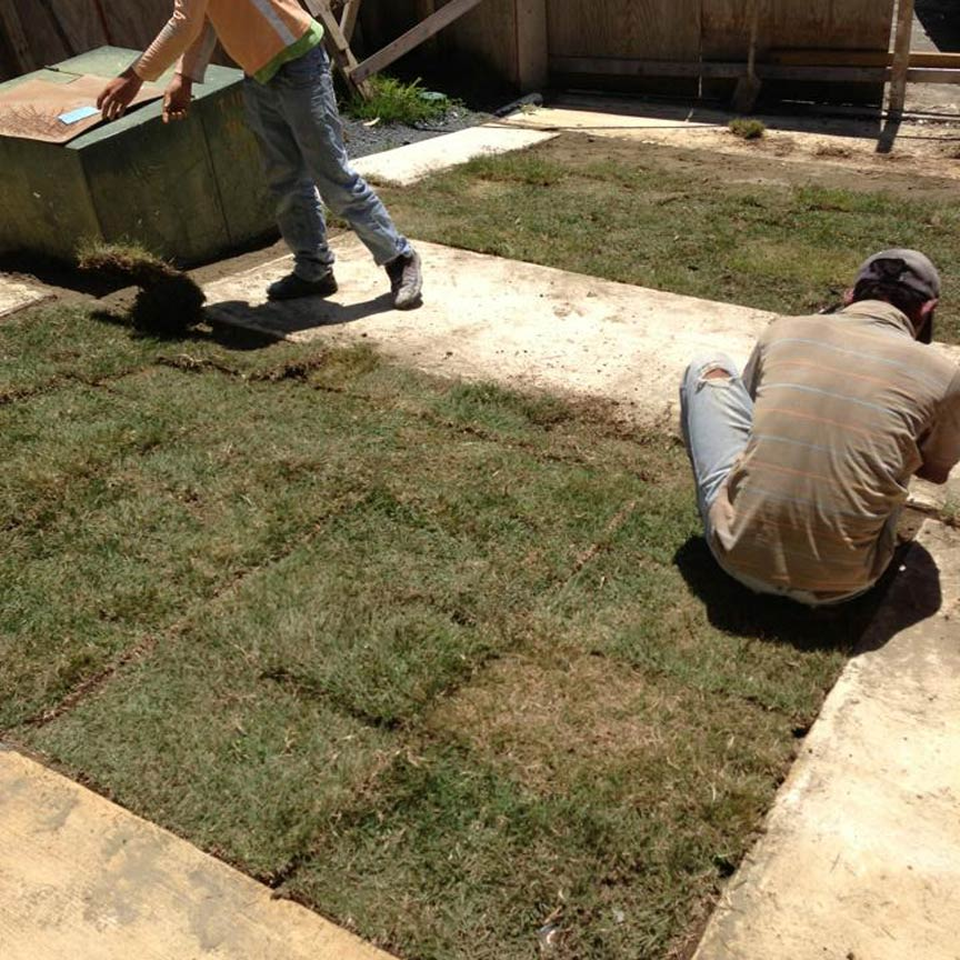 Placing sod on Grasspave2