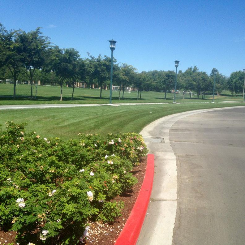Nice landscaping around lush grass fire lane.